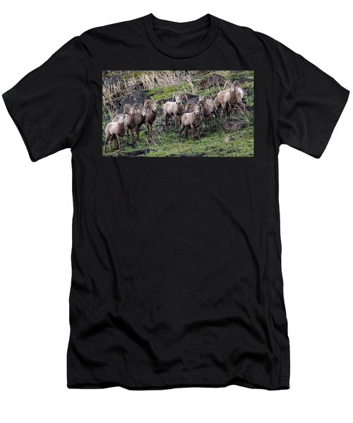 Bighorn Reunion Men's T-Shirt (Athletic Fit)