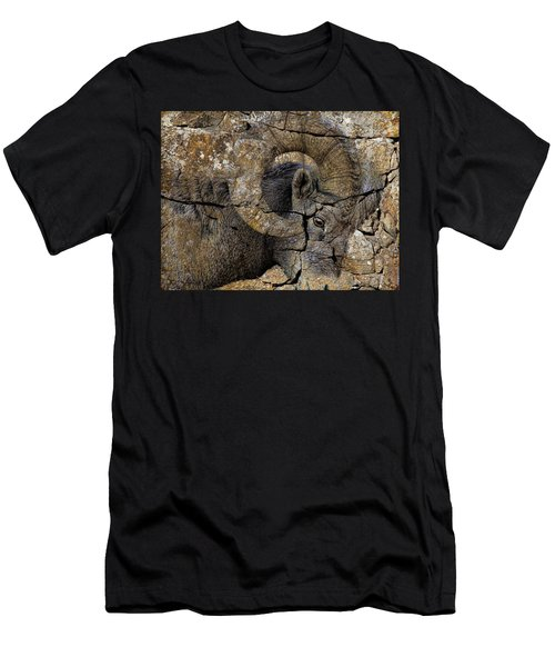 Bighorn Rock Art Men's T-Shirt (Athletic Fit)