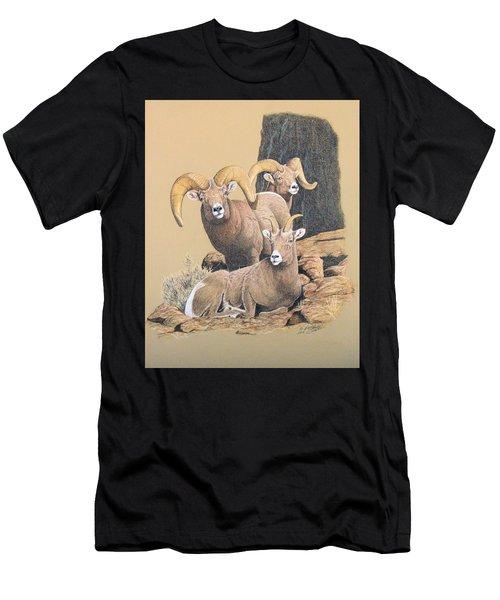 Bighorn Sheep Men's T-Shirt (Athletic Fit)