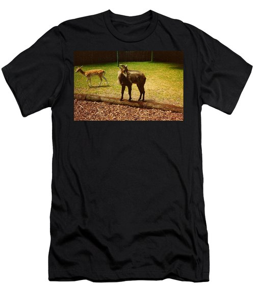 Men's T-Shirt (Slim Fit) featuring the photograph Billy Goat Keeping Lookout by Amazing Photographs AKA Christian Wilson