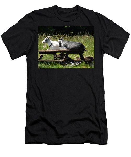 Billy Goats Picnic Men's T-Shirt (Slim Fit) by Brenda Brown