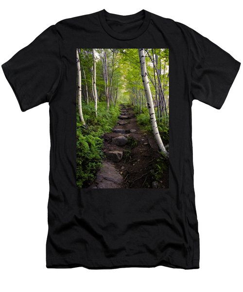 Birch Woods Hike Men's T-Shirt (Athletic Fit)