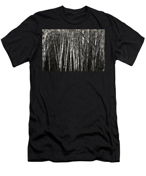 Birches Men's T-Shirt (Athletic Fit)