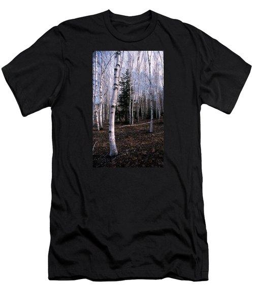 Birches Men's T-Shirt (Slim Fit) by Skip Willits