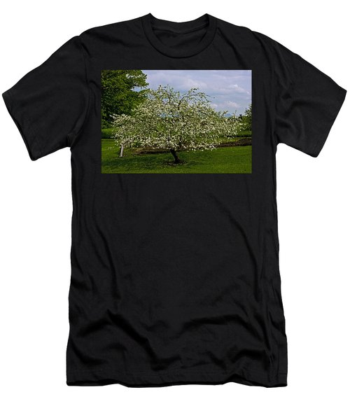 Men's T-Shirt (Slim Fit) featuring the painting Birth Of Apples by John Haldane