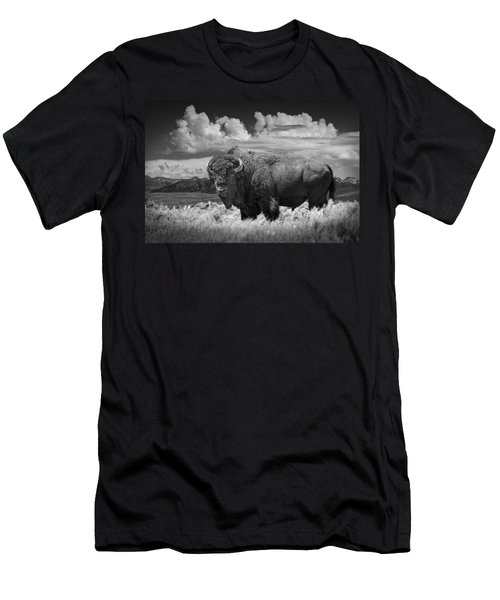 Black And White Photograph Of An American Buffalo Men's T-Shirt (Slim Fit) by Randall Nyhof