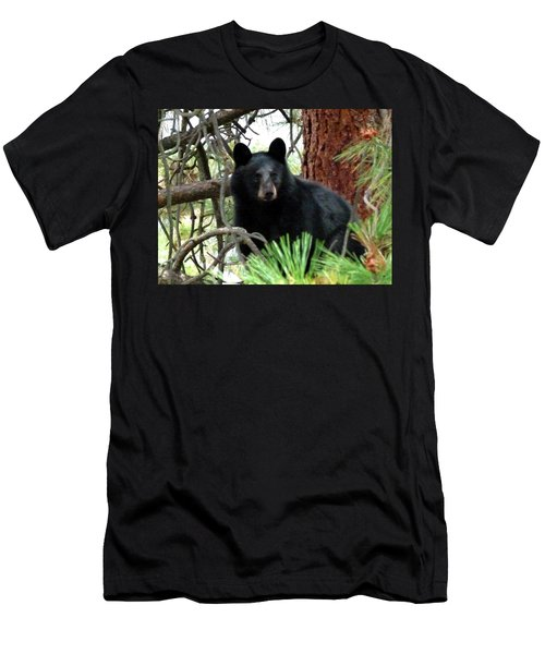 Black Bear 1 Men's T-Shirt (Slim Fit) by Will Borden