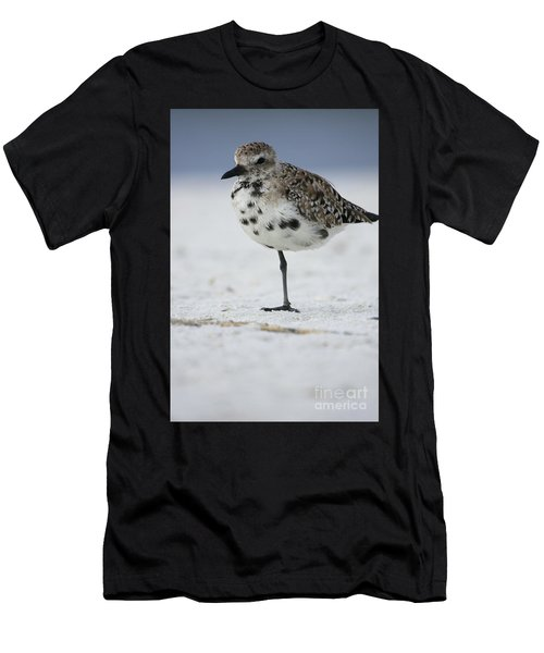 Black-bellied Plover Men's T-Shirt (Athletic Fit)