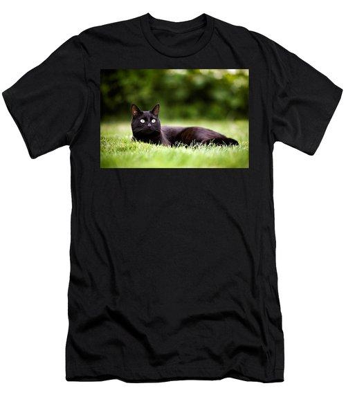 Black Cat Lying In Garden Men's T-Shirt (Athletic Fit)