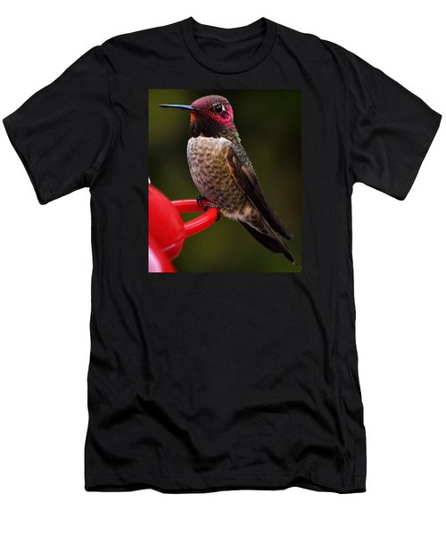 Men's T-Shirt (Slim Fit) featuring the photograph Black Chinned Male Hummingbird by Jay Milo