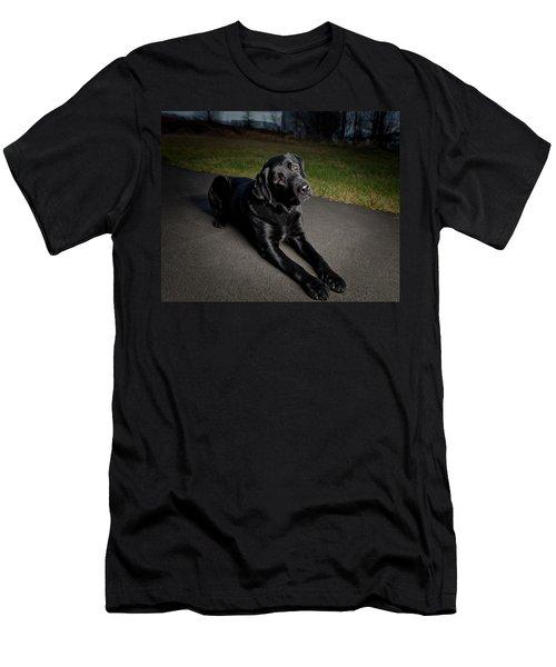 Black Labrador Retriever Lying Down Men's T-Shirt (Athletic Fit)