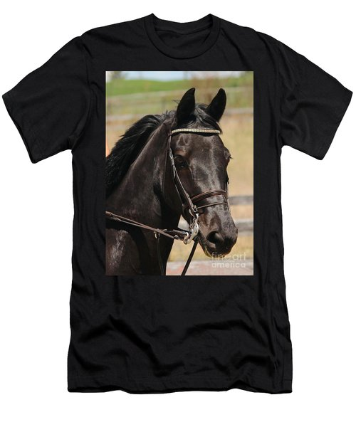 Black Mare Portrait Men's T-Shirt (Athletic Fit)