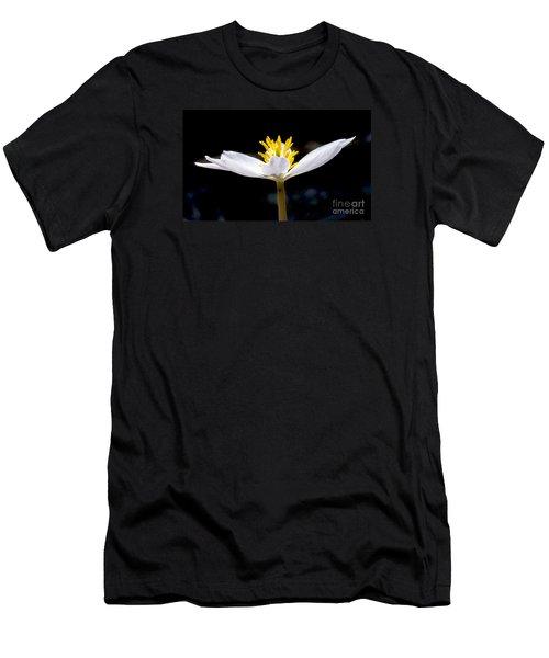 Bloodroot 1 Men's T-Shirt (Athletic Fit)