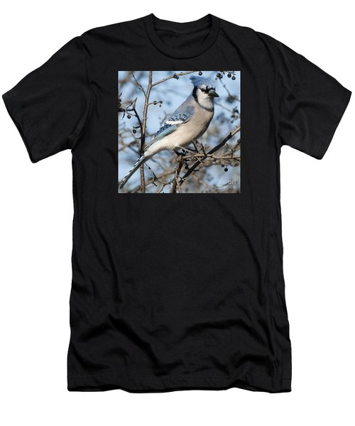 Blue Jay.. Men's T-Shirt (Athletic Fit)