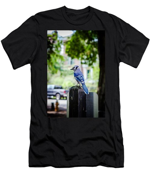 Men's T-Shirt (Slim Fit) featuring the photograph Blue Jay by Sennie Pierson