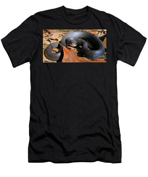 Blue Racer Men's T-Shirt (Athletic Fit)