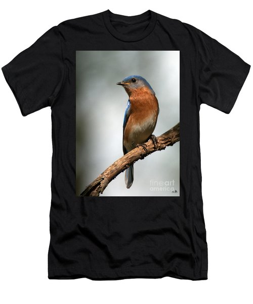 Bluebird- I See You Men's T-Shirt (Athletic Fit)