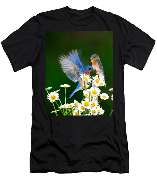 Bluebirds And Daisies Men's T-Shirt (Athletic Fit)