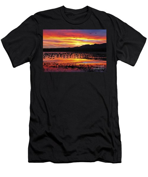 Bosque Sunset II Men's T-Shirt (Athletic Fit)