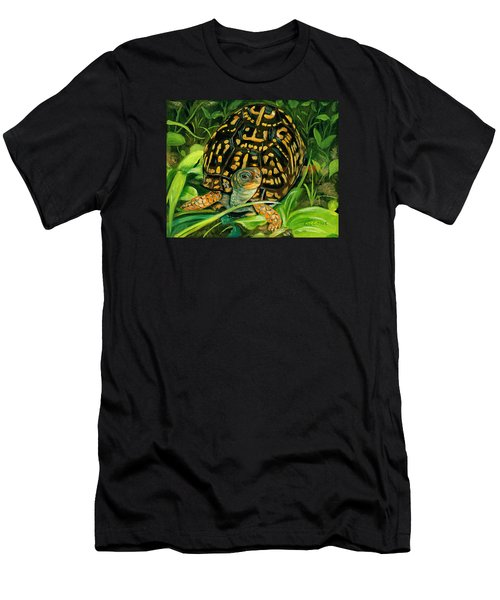 Box Turtle Men's T-Shirt (Athletic Fit)