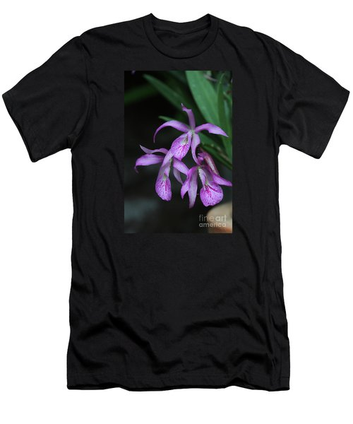 Brassanthe Maikai Orchid Men's T-Shirt (Athletic Fit)