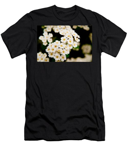 Bridal Veil Spirea Men's T-Shirt (Athletic Fit)