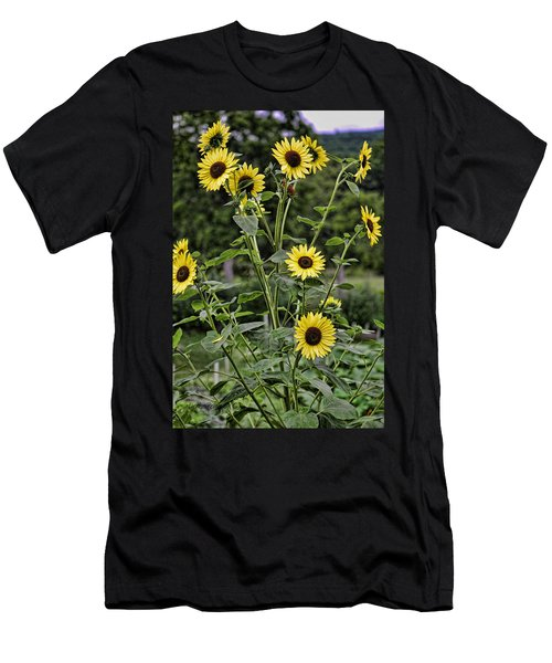 Bright Sunflowers Men's T-Shirt (Slim Fit)