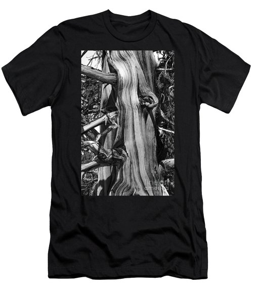 Men's T-Shirt (Athletic Fit) featuring the photograph Bristle-cone Pine-2 by Mae Wertz