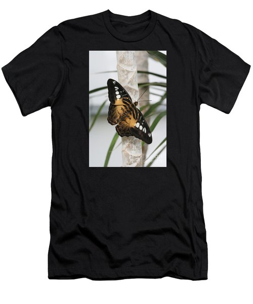 Brown Clipper Butterfly #2 Men's T-Shirt (Athletic Fit)