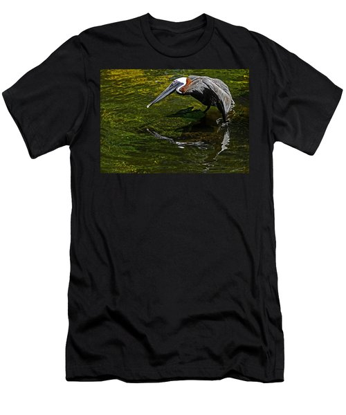 Brown Pelican Men's T-Shirt (Athletic Fit)