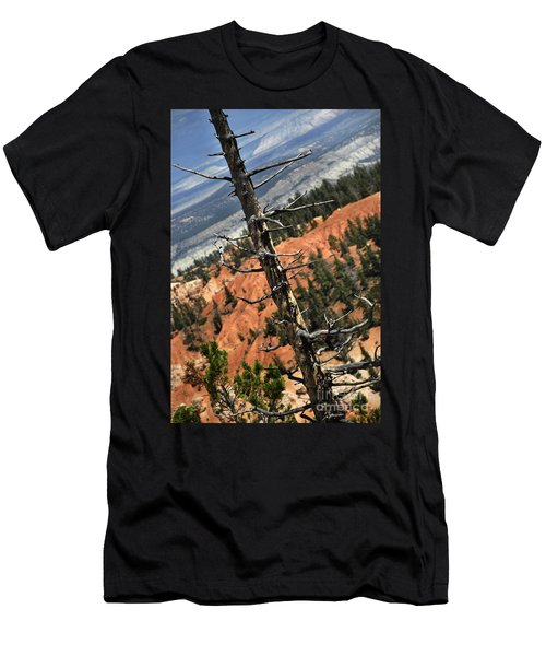 Bryce Tree Men's T-Shirt (Athletic Fit)