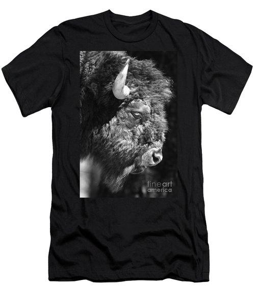 Buffalo Portrait Men's T-Shirt (Athletic Fit)