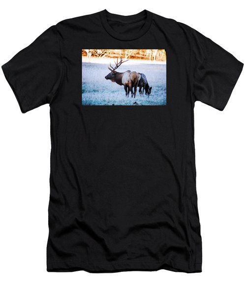 Bull Elk And Cow Men's T-Shirt (Athletic Fit)