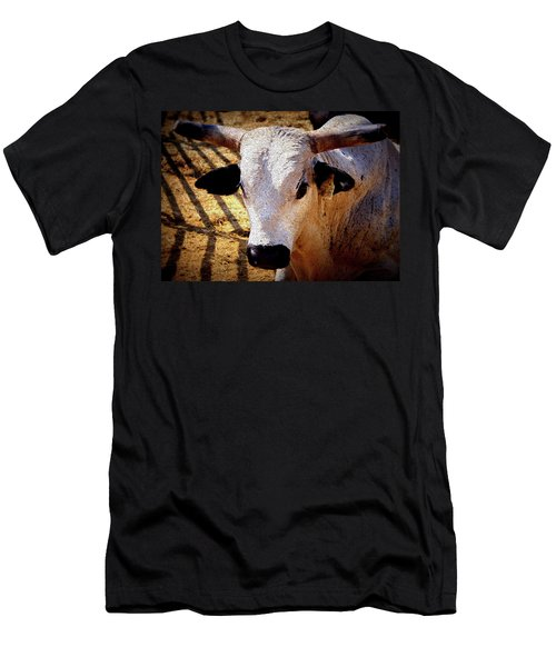 Bull Riders - Nightmare - Rodeo Bull Men's T-Shirt (Athletic Fit)