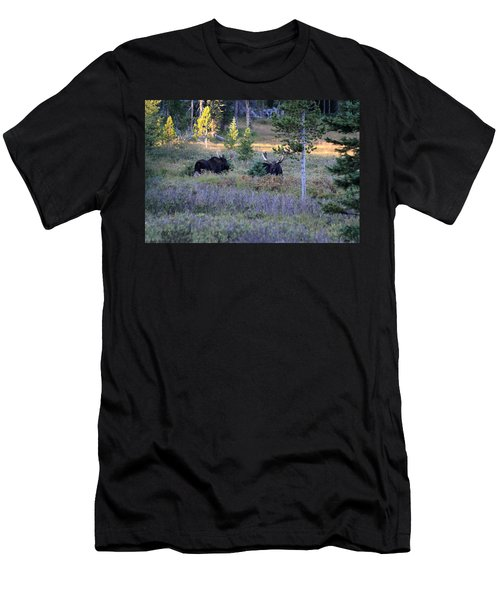 Bulls In The Meadow Men's T-Shirt (Athletic Fit)