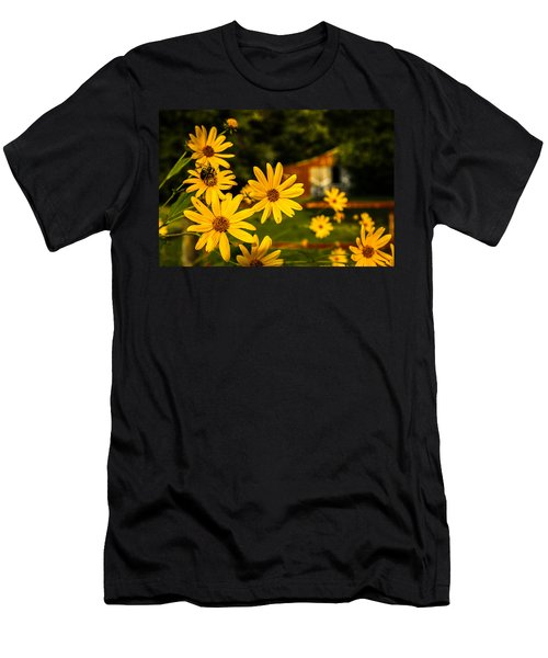 Bumble Bee On A Western Sunflower Men's T-Shirt (Athletic Fit)