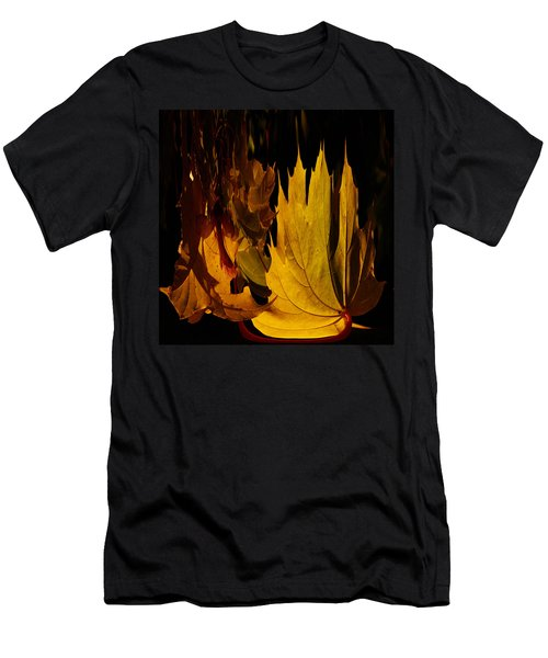 Burning Fall Men's T-Shirt (Slim Fit) by Jouko Lehto