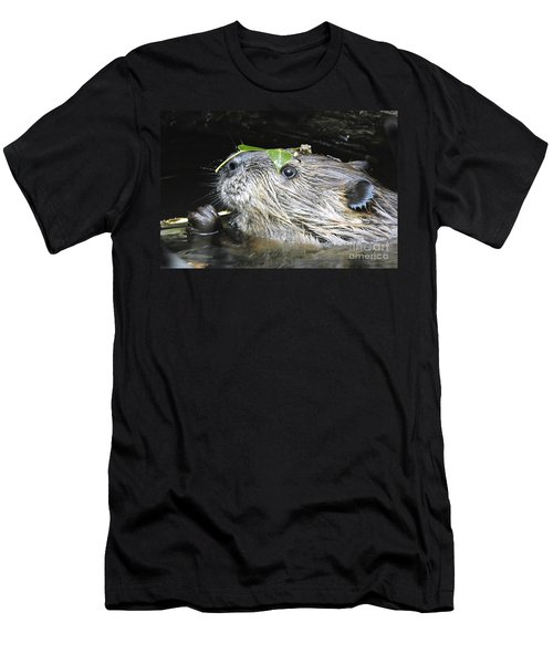 Busy Beaver Men's T-Shirt (Athletic Fit)