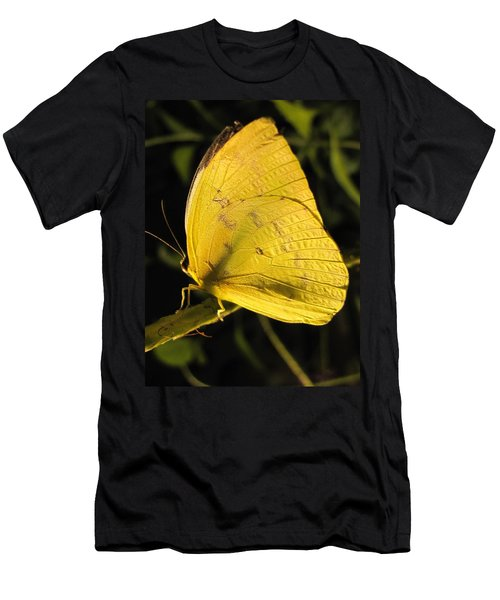 Butterscotch Men's T-Shirt (Slim Fit) by Jennifer Wheatley Wolf