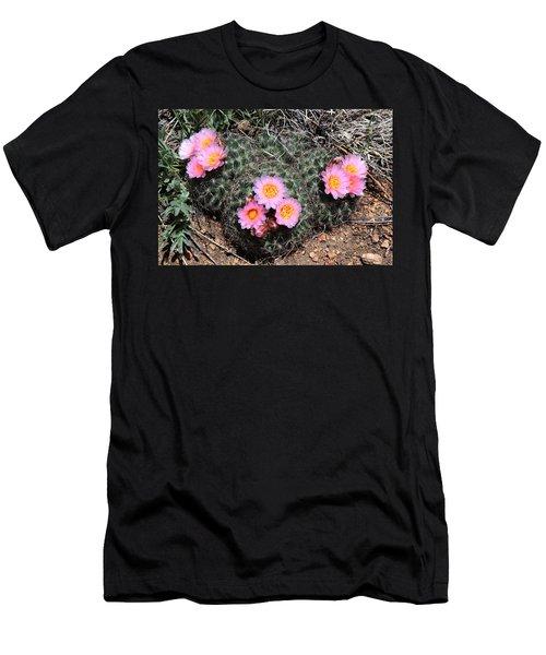 Cactus Blooms Men's T-Shirt (Athletic Fit)