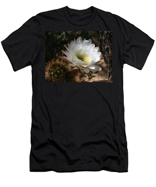 Cactus Flower Full Bloom Men's T-Shirt (Athletic Fit)