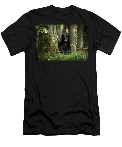 Cades Cove Bear Men's T-Shirt (Slim Fit) by Douglas Stucky