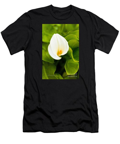 Calla Lily Plant Men's T-Shirt (Athletic Fit)