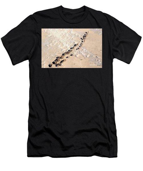 Camels Walking In Desert Men's T-Shirt (Athletic Fit)
