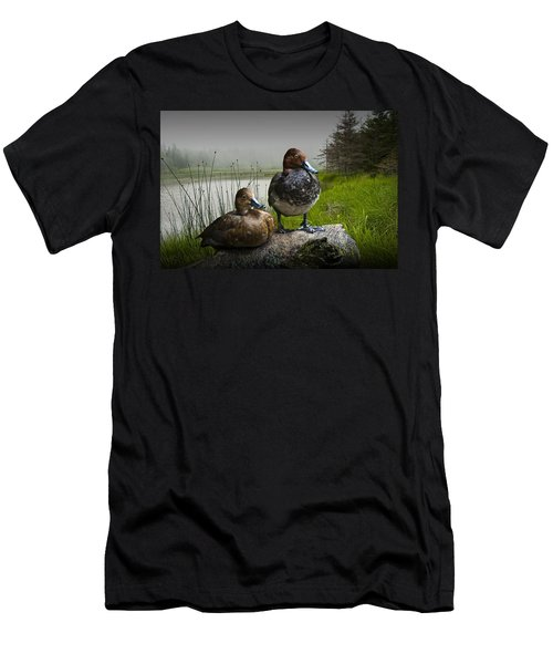 Canvasback Duck Pair By A Pond Men's T-Shirt (Slim Fit) by Randall Nyhof