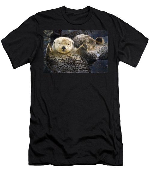 Captive Two Sea Otters Holding Paws At Men's T-Shirt (Athletic Fit)