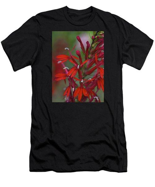 Cardinal Flower Men's T-Shirt (Athletic Fit)