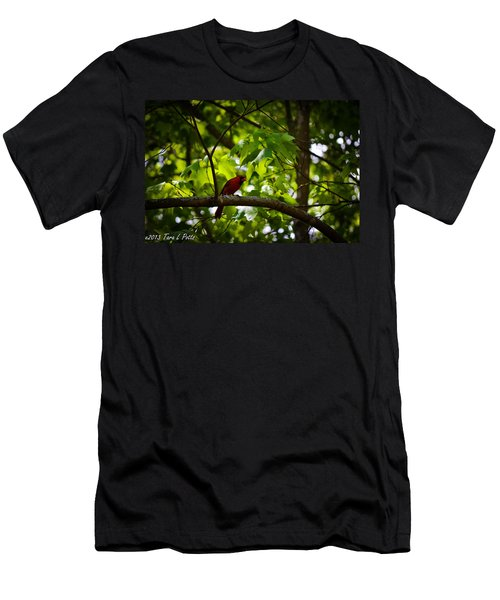 Cardinal In The Trees Men's T-Shirt (Athletic Fit)
