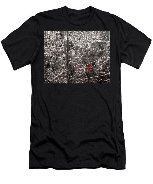 Cardinal  Men's T-Shirt (Athletic Fit)