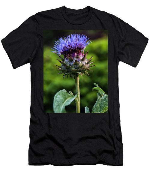 Cardoon Men's T-Shirt (Slim Fit) by Chris Flees